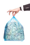 Saco do dinheiro Imagens de Stock