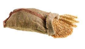 Saco do trigo Foto de Stock