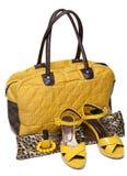 Saco feminino e loafers femininos amarelos dos pares Fotografia de Stock