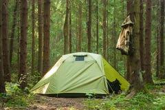 Saco verde do curso de Forest Nature Sun Happy Trip do verão da árvore de Kamping foto de stock