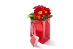 Saco vermelho do presente Imagem de Stock