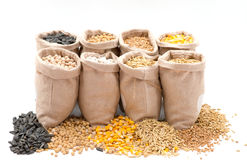 Sacos com os cereais isolados Fotos de Stock