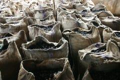 Sacos das nozes-moscadas Imagens de Stock Royalty Free