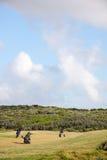 Sacos de golfe que sentam-se no campo de golfe Fotografia de Stock Royalty Free