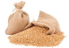 Sacos de grões do trigo imagem de stock