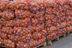 Sacos de la cebolla del mercado de los granjeros Imagen de archivo libre de regalías