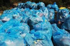 Sacos de lixo Foto de Stock Royalty Free