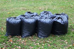 Sacos de lixo Imagem de Stock Royalty Free