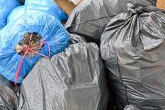 Sacos de lixo Fotos de Stock Royalty Free