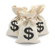 Sacos do dinheiro com reflexão fotos de stock royalty free