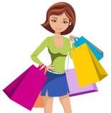 Sacos do saco de compras da mulher da forma isolados ilustração stock