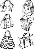 Sacos modelo Imagens de Stock Royalty Free