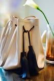 Sacos projetados Fotografia de Stock
