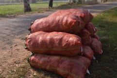 Sacos rojos Foto de archivo libre de regalías