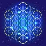 Sacral geometri Kosmiska rundor i himlen Arkivbild