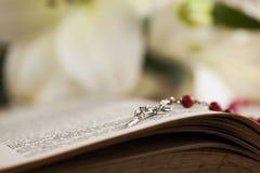 Bible, Eucharist, sacrament of communion background. Sacrament of communion, Eucharist symbol royalty free stock photos