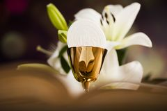 Holy communion a golden chalice with grapes and bread wafers. Sacrament of communion, Eucharist symbol royalty free stock images