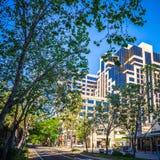 Sacramento california city skyline and street views royalty free stock photography