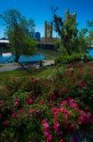 Sacramento California. Sunny Day in Sacramento California Vertical Composition royalty free stock photo