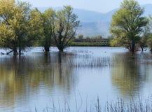 Sacramento National Wildlife Refuge scenery Stock Photo