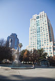 Sacramento Skyline. Tall buildings show above the tree in a skyline view of the city of Sacramento, California royalty free stock photography