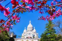 Sacre Coeur大教堂在春天在巴黎,法国 库存图片