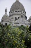 Sacre Coeur, Montmarte,巴黎开花的花 库存图片
