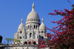 Sacre Coeur Cathedral during spring time in Paris, France Royalty Free Stock Photo