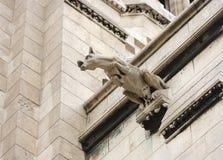 Sacre coeur gargoyle. Stone sacre coeur temple gargoyle Royalty Free Stock Photo