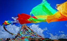 Sacre scritture tibetane Fotografie Stock Libere da Diritti