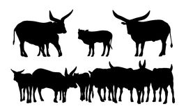 Sacred african cows silhouettes set Royalty Free Stock Image