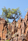 Sacred Canyon in Flinders Ranges Australia Stock Photo