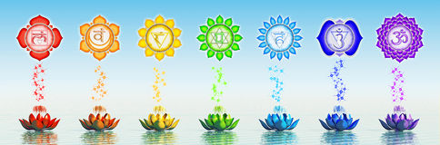 Sacred Chakra Lotus Stock Photos