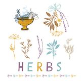 Sacred Dried Herb Bunches Vector Illustration Icon Set royalty free illustration