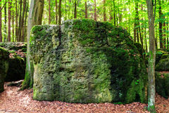 Sacred Druid Grove. Picture of an amazing stone in a sacred druid grove. Shot near the village of Streitberg in Upper Franconia, Bavaria / Germany. It was taken Stock Photos