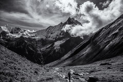 The Sacred Fishtail Mountian (Machhapuchre), in Annapurna Range, Royalty Free Stock Images