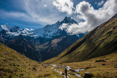 The Sacred Fishtail Mountian seen in the distance, sunrise, in Annapurna Range, Nepal. The Sacred Fishtail Mountian (Machhapuchre) seen in the distance, high sun royalty free stock image