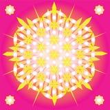 Sacred geometry Flower of life Stock Image