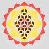 Sacred Geometry-Flower Of Life Seed Stock Photos