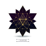 Sacred geometry forms Royalty Free Stock Image