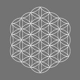 Sacred geometry symbol, Flower of Life for alchemy, spirituality, religion, philosophy, astrology emblem or label. White icon logo. Isolated on grey background Royalty Free Stock Photos