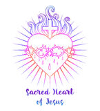 Sacred Heart of Jesus. Vector illustration in vivid colors isola Stock Photo