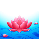 Sacred lotus vector illustration