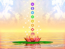 Free Sacred Lotus And Chakras Royalty Free Stock Photo - 48748965