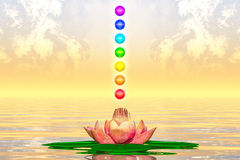 Sacred Lotus And Chakra Spheres Royalty Free Stock Photos