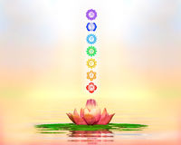 Sacred Lotus And Chakras Royalty Free Stock Photo