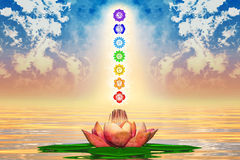 Sacred Lotus And Chakras Royalty Free Stock Image