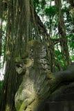 Sacred Monkey Forest Sanctuary in Ubud. Bali Island, Indonesia Royalty Free Stock Photography