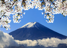 The sacred mountain of Fuji in the background of blue sky Stock Image