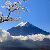 The sacred mountain of Fuji in the background of blue sky Royalty Free Stock Photography